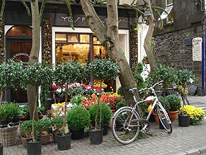 Garden shop with bike