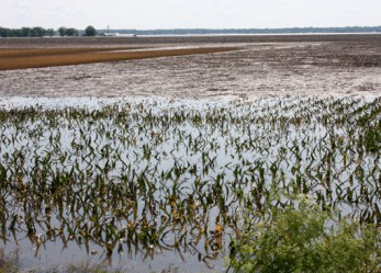 Agriculture And Money: Flooding Means Trouble For Midwest
