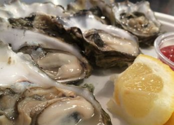 Oyster Season Basics for Business Reporters