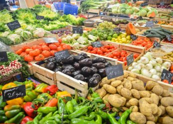 New Twist on Earth Day: Ideas for Covering Food Waste